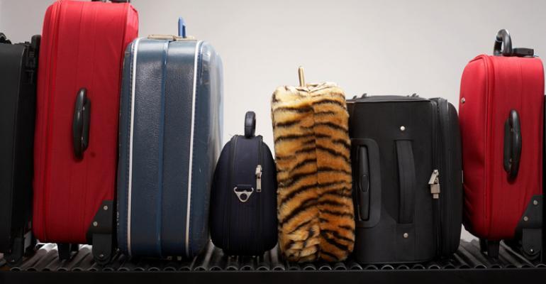 luggage_tiger.jpg
