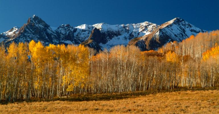 Telluride to Offer Group Experiential Development Tracks