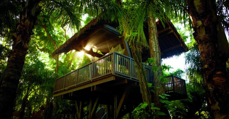What a spot for a massage one of the resort39s tree massage platforms