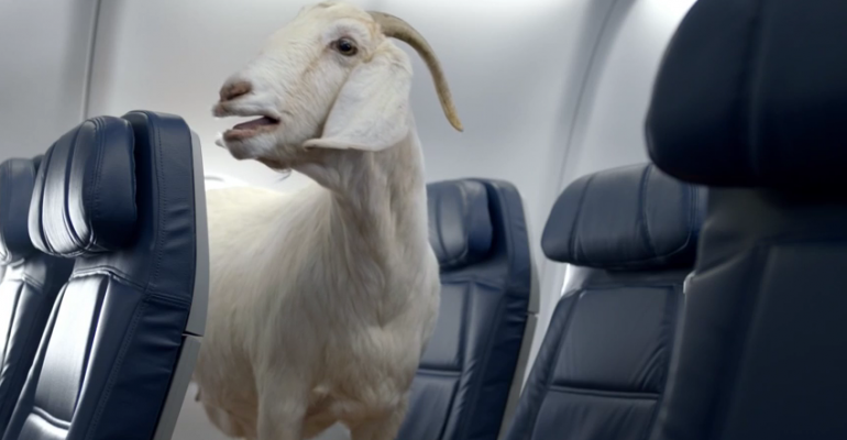 "Delta's New Safety Video Is the ""Internetest"" Ever"