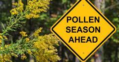 Sign: Pollen season ahead