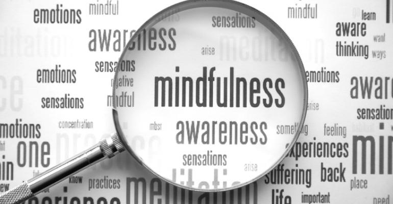 Mindfulness under magnifying glass