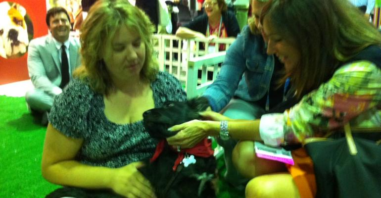Puppy snuggling again was a big hit at MPIs 2012 World Education Congress