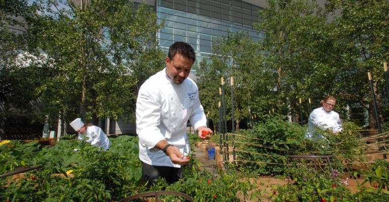 Centerplate Catering Executive Chef Carmen Callo selects produce from the Blue Bear Farm at the Colorado Convention Center As the exclusive caterer for the convention center Centerplate grows about 5000 pounds of produce annually at the onsite farm Credit StevieCrecelius
